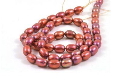 Tout savoir sur les perles d'eau douce